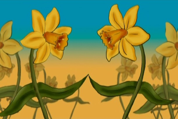 Animation of daffodils