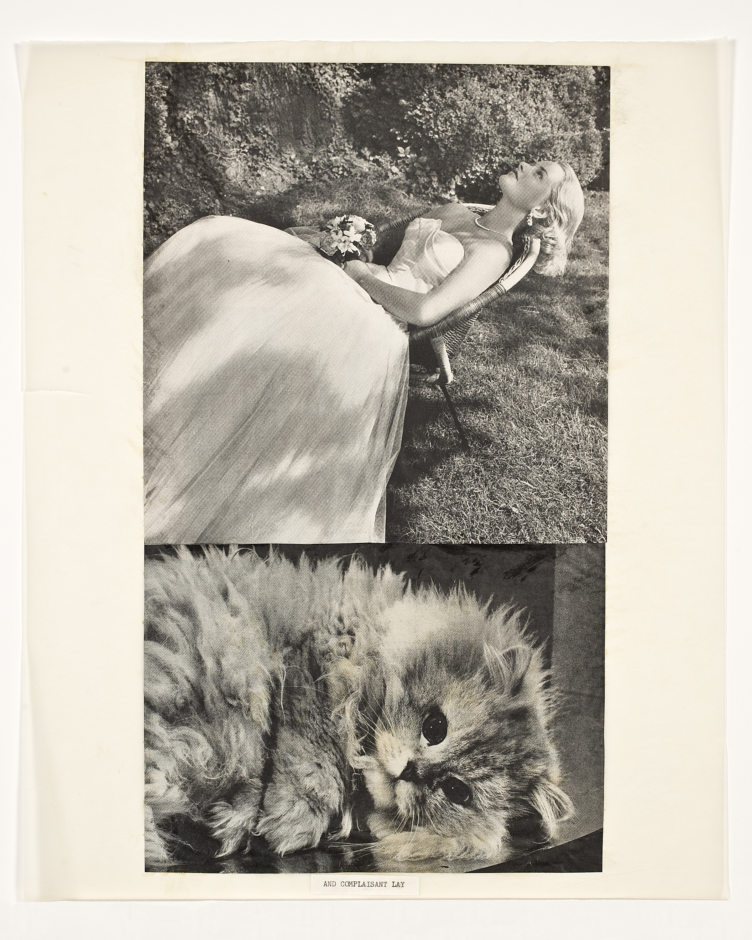"At top, an image of a woman in a large gown reclining in a wicker chair on a lawn. At the bottom, an image of a cat curled on a table facing the camera. At the bottom, the words ""AND COMPLAISANT LAY."""