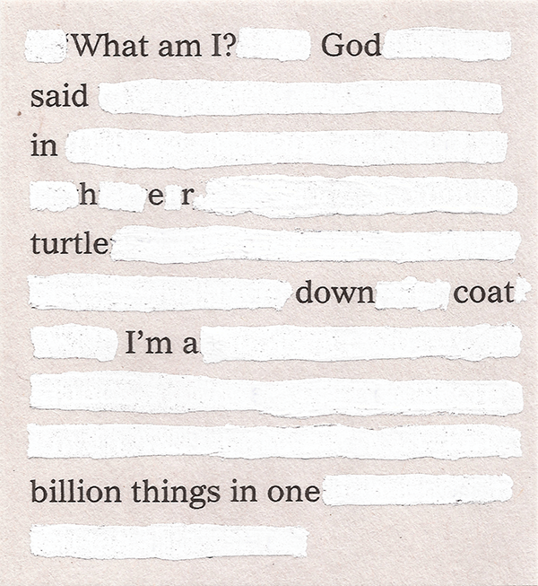 What am I? God / said / in / h e r / turtle / down coat/ I'm a // billion things in one