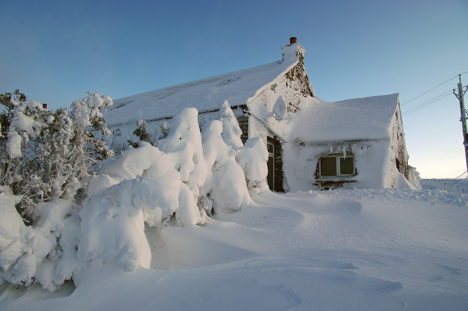 A house and trees covered in a large snow drift.